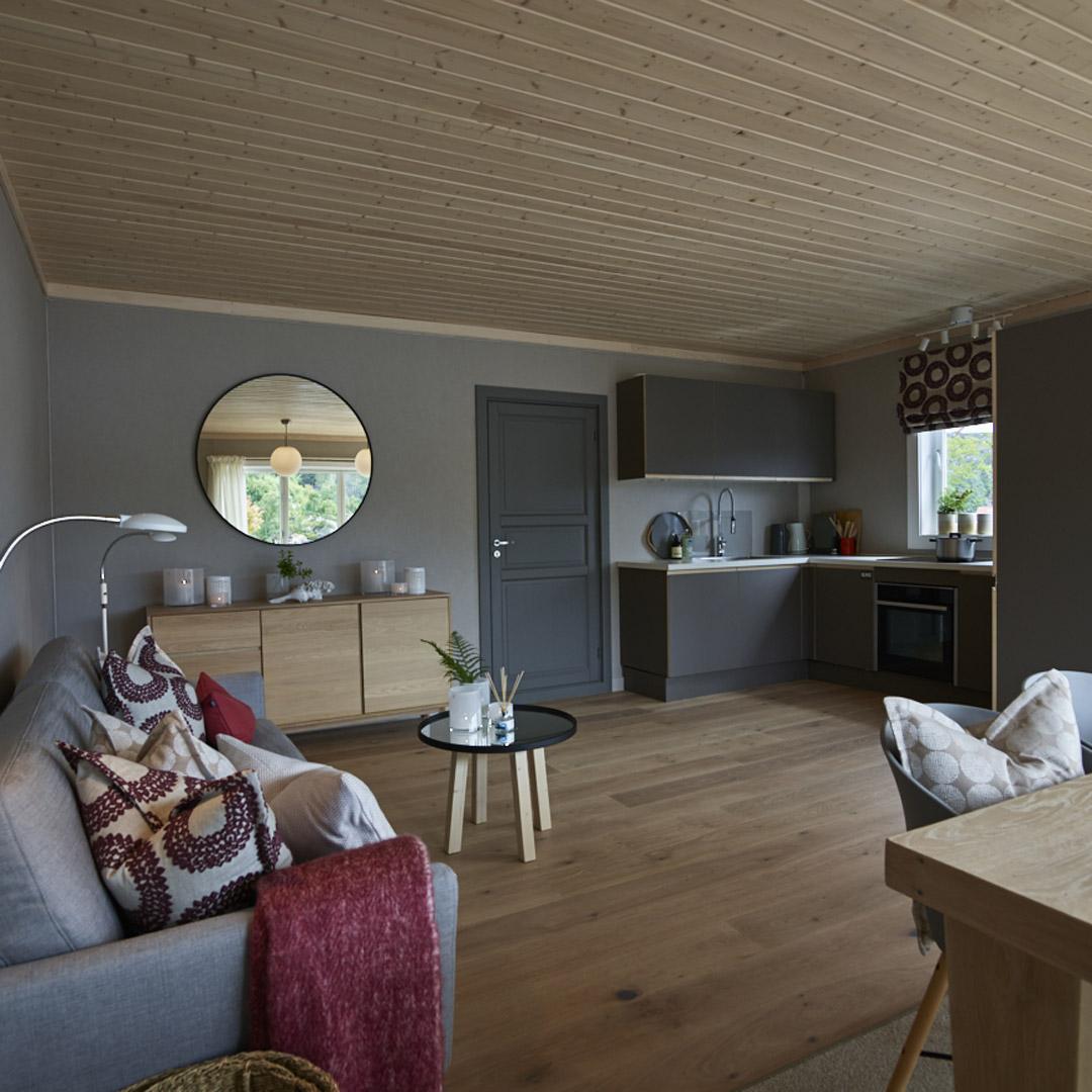 Stue i hytte med kjøkkenkrok i hjørnet